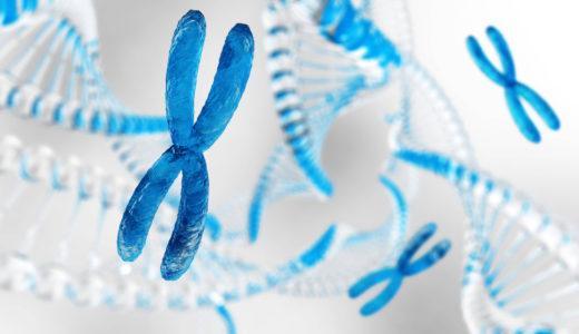 染色体異常と流産の関係_卵子提供